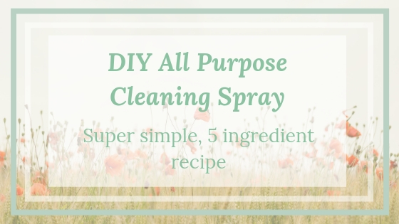 DIY-all-purpose-cleaning-spray