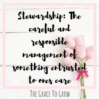 definition-of-stewardship-the-careful-and-responsible-management-of-something-entrusted-to-ones-care