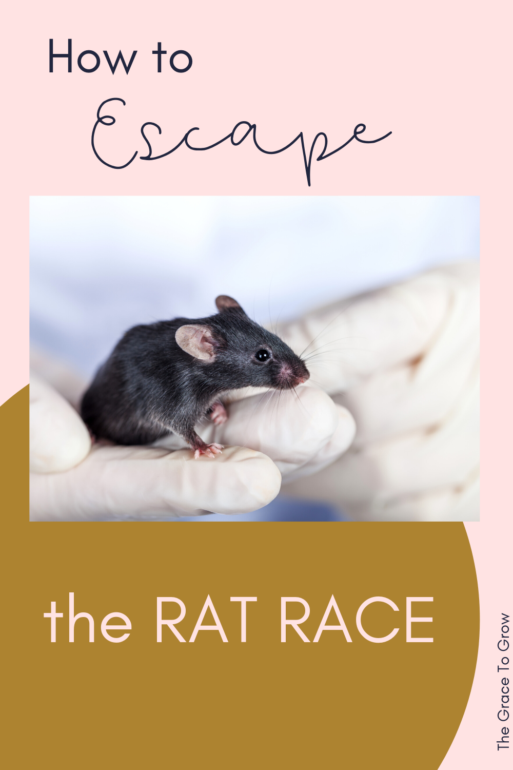 how-to-escape-the-rat-race-pinterest-image