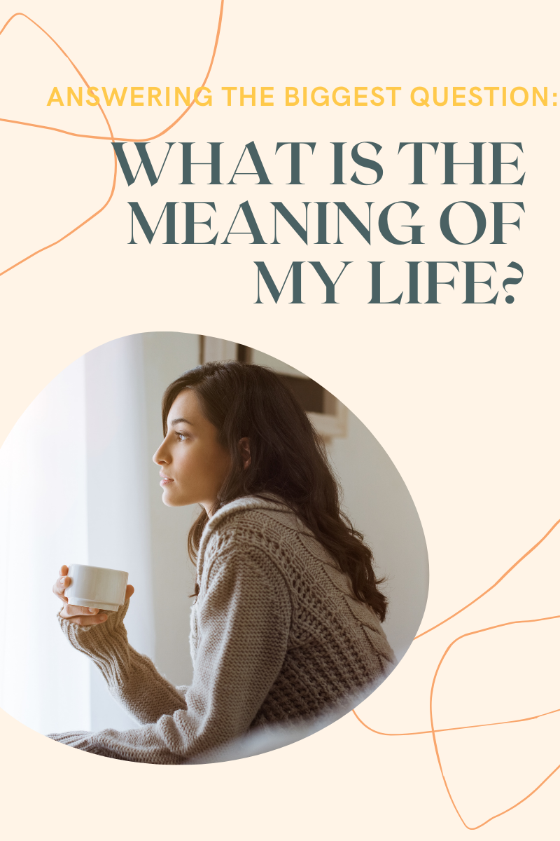 what-is-the-meaning-of-life-pinterest-graphic